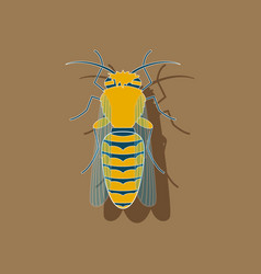 Paper sticker on background of bee vector