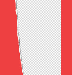 Torn from top to bottom vertical sheet red a4 vector