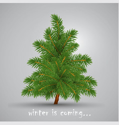 Winter is coming christmas tree highly realistic vector
