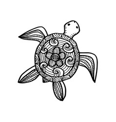 drawing decorative turtle coloring book vector image