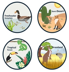 Ecology 01 01 vector