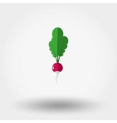 Radish icon Flat vector image