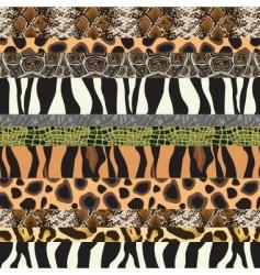 safari pattern background vector image vector image