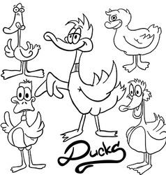 black and white ducks vector image