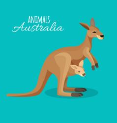 Austrastralia kangaroo animal mother with child in vector