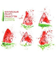 Watermelon watercolor vector