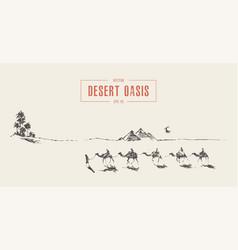 Caravan camels walking towards oasis desert vector