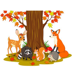Cartoon wild creatures in the forest vector