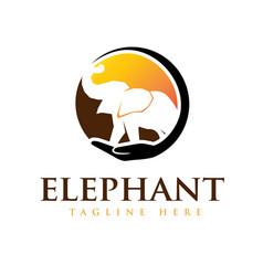 Elephant care world logo designs solutions vector