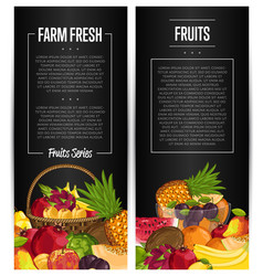 fresh organic fruit flyers set vector image