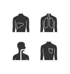 healthy human organs glyph icons set liver vector image