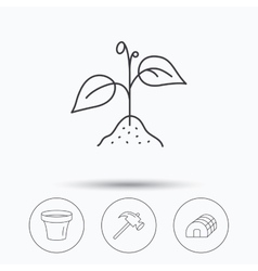 Sprout plant hammer and pot icons vector image