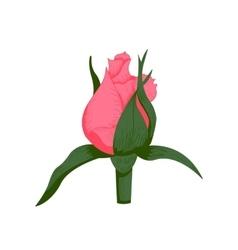 Vintage rose flower vector image