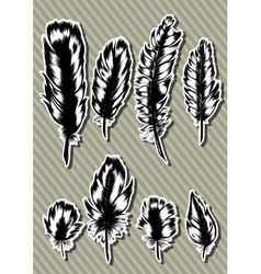 Vintage Feather set Hand-drawn vector image vector image