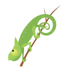 walking chameleon icon cartoon style vector image vector image