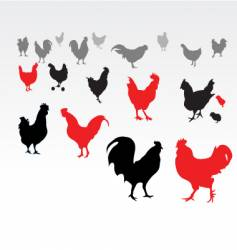 chicken life vector image
