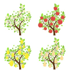 Stylized Fruit Trees2 vector image vector image