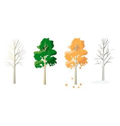 Aspen in four seasons vector