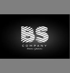 Bs b s letter alphabet logo black white icon vector