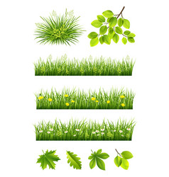 Summer grass and leaves collection vector
