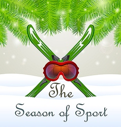 The season of sport Goddles and skiing vector image
