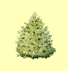 Watercolor fir tree christmas vector