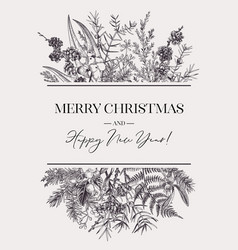 botanical card with evergreens vector image