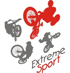 Extreme sport BMX rider vector image