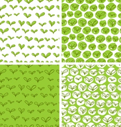 Patterns with fresh green leaves vector image