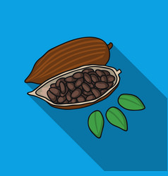 roasted cacao beans icon in flat style isolated on vector image