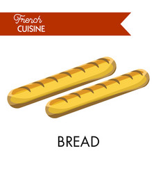 Tasty long bread from french cuisine isolated vector