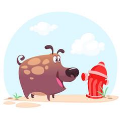 cartoon bulldog or boxer dog vector image vector image