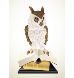 owl and book vector image