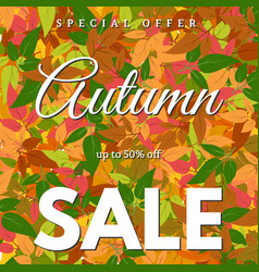 autumn leaves and an inscription autumn sale vector image