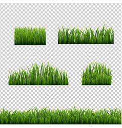 big set green grass borders transparent background vector image