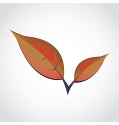 SpringLeafs vector image