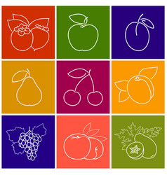 linear fruit berry icons vector image vector image