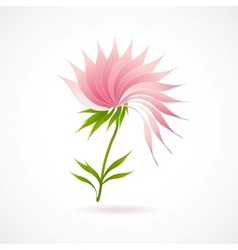 Abstract lotus flower icon isolated on white vector image