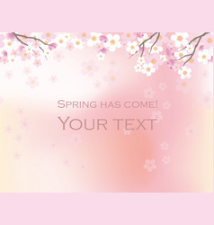 a seamless cherry blossoms background vector image