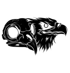 black silhouette bald eagle or hawk head vector image