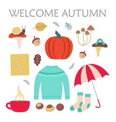cute set with sweater and autumn elements vector image