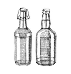 hand drawn beer bottles vector image