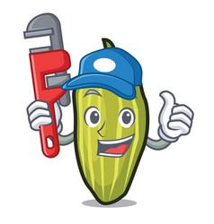 Plumber cardamom mascot cartoon style vector