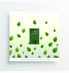 white background with green leaves vector image