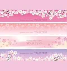 four seamless with cherry blossoms vector image