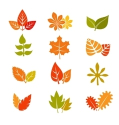 Multicolor autumn leaves flat icons Fall vector image vector image