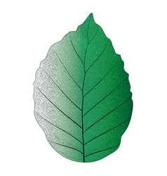 Botanical series elegant single exotic leaf 2 vector