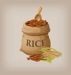 brown natural long rice in small burlap sack vector image