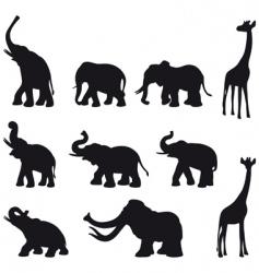 Elefants mammoth giraffe vector