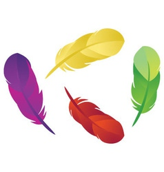Feathers 1 vector